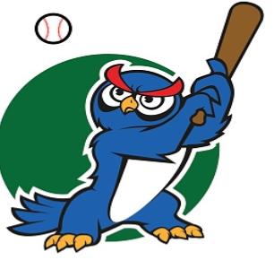 Night Owl Softball Tournament