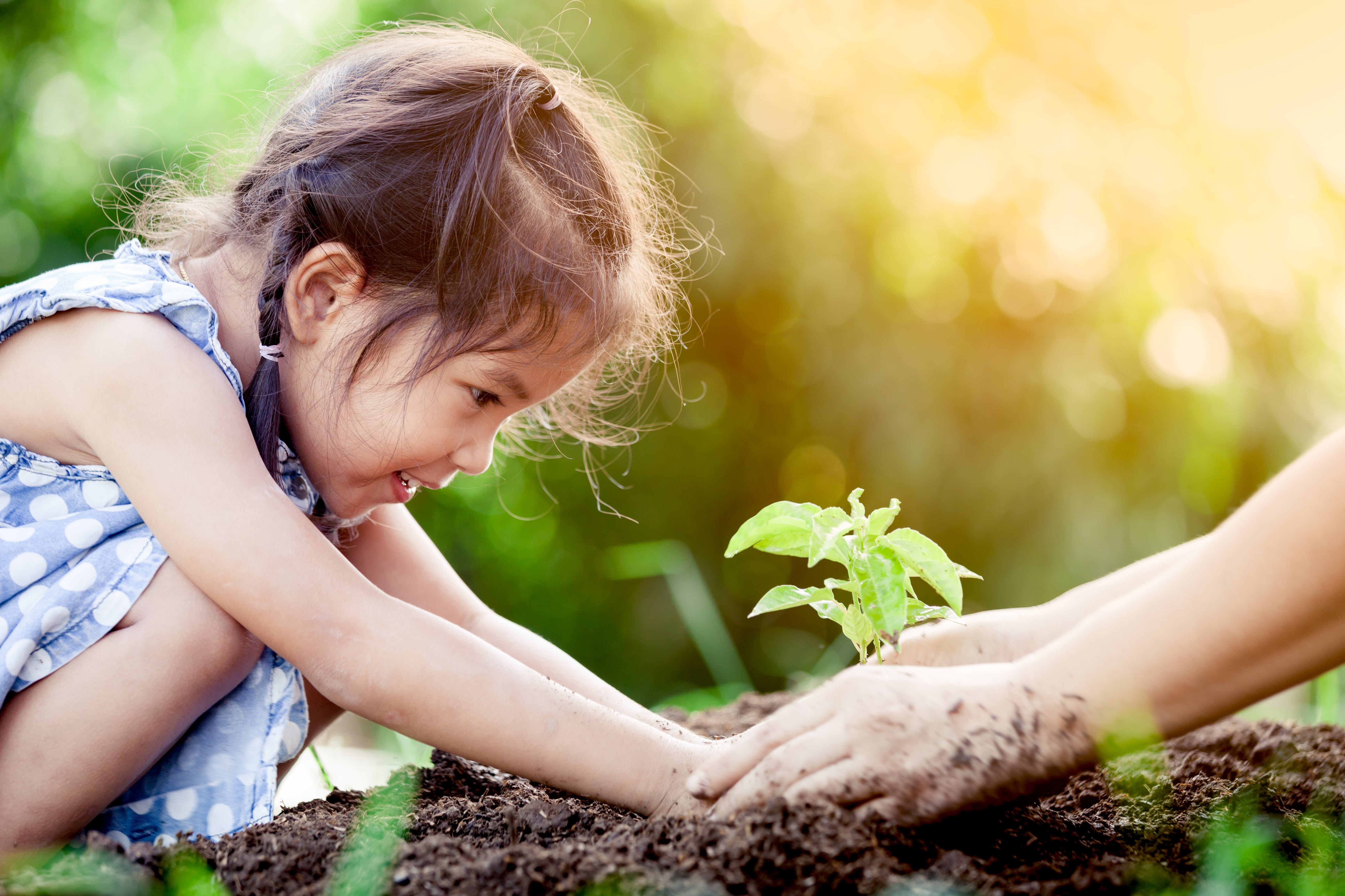 Ways to celebrate Earth Day while social distancing