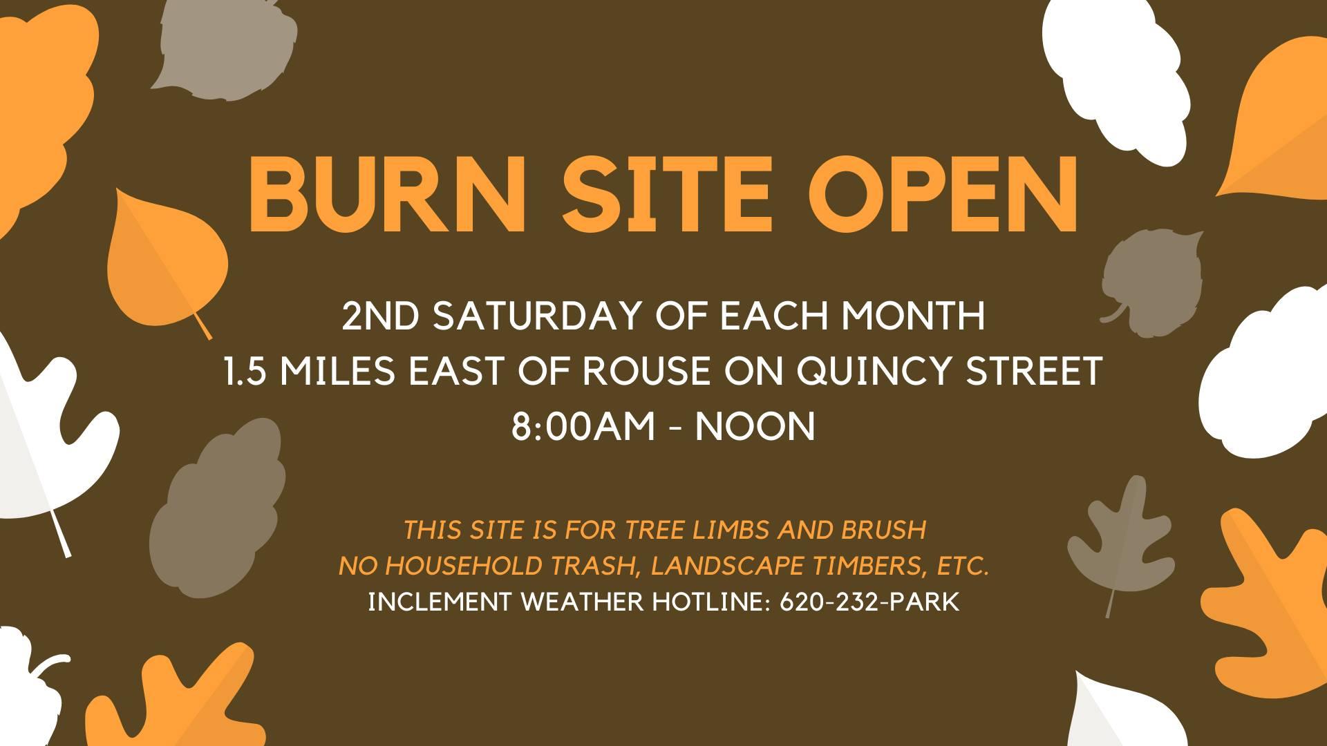 burn site image