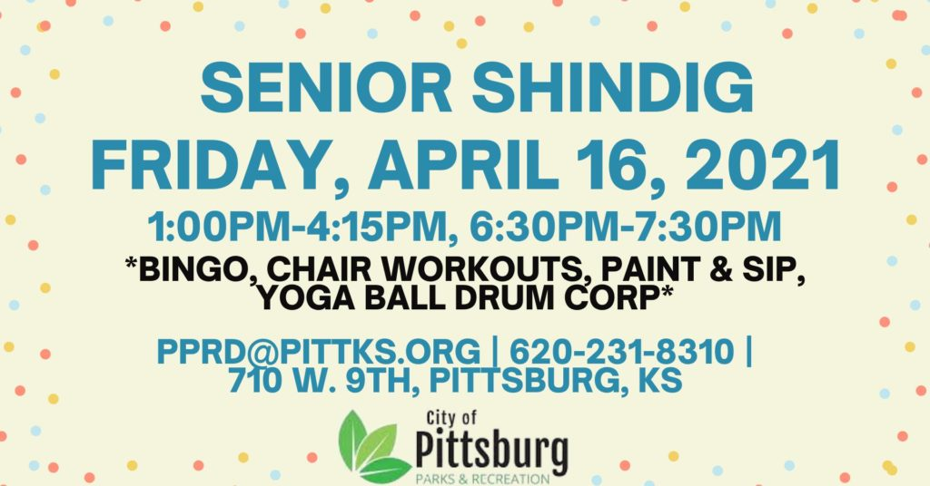 Senior Shindig Event image
